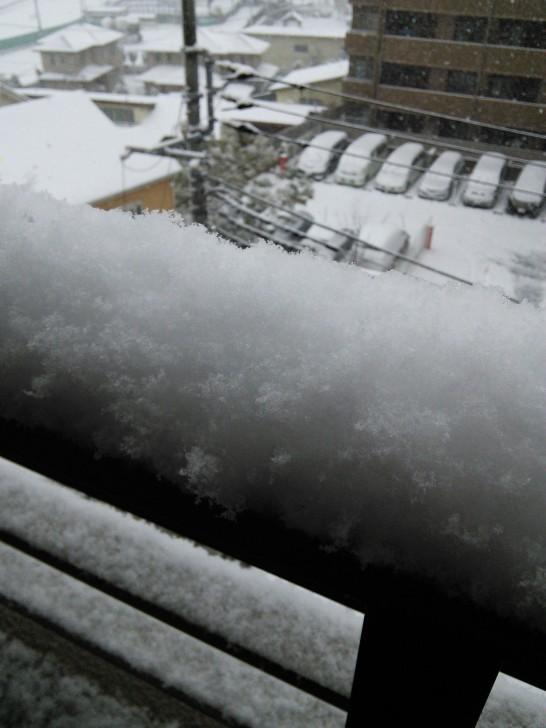 2014/02/08の積雪具合、ベランダの柵に積もった雪の写真