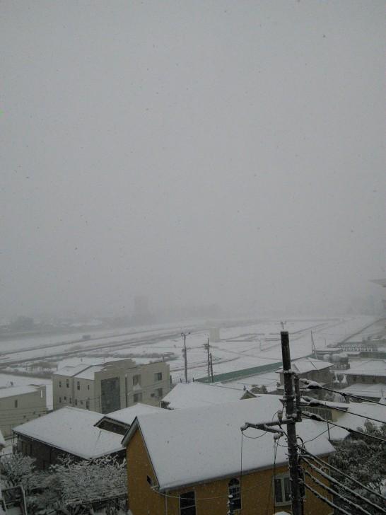 2014/02/08、雪空の写真