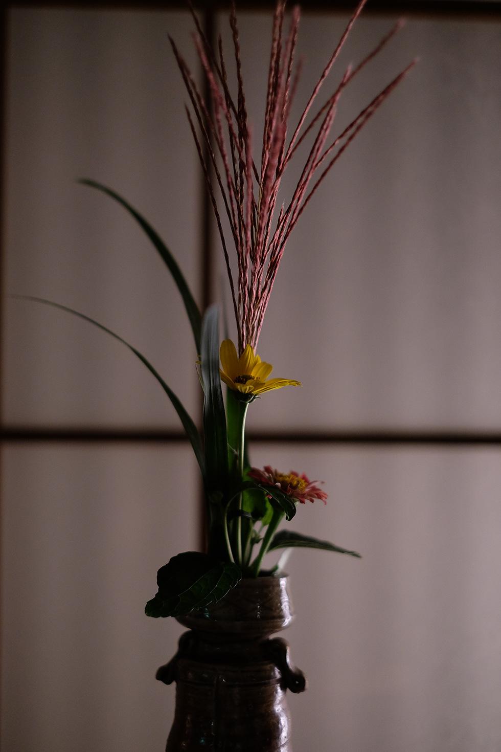 かんすい苑覚楽、湯上がり処の生け花