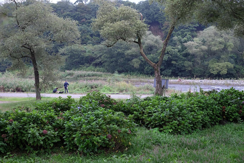 かんすい苑覚楽横の那珂川